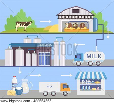 Milk Factory Set With Automatic Machines. Milk Production Stages Set. Truck, Grazing Cows, Milking M