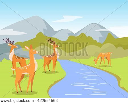 Deer At Watering Hole Cartoon Illustration. Cute Cartoon Deer Standing Near Clear Sparkling River, D