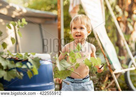 Funny Little Boy Playing In Sunny Backyard. Preschooler Child Having Fun. Summer At Countryside. Joy