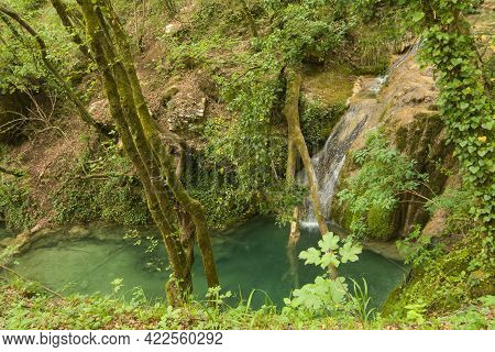 View Of Natural Pool In The Wild Umbria Forest, Italy