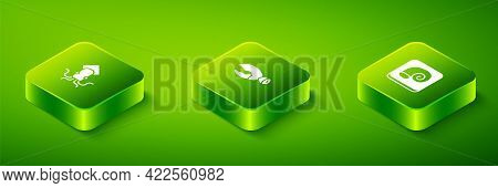 Set Isometric Lobster Or Crab Claw, Octopus On Plate And Icon. Vector