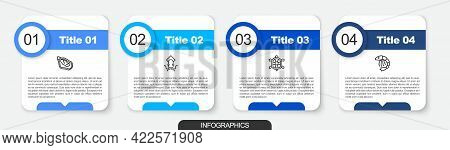 Set Line Mussel, Octopus, Turtle And Shrimp. Business Infographic Template. Vector