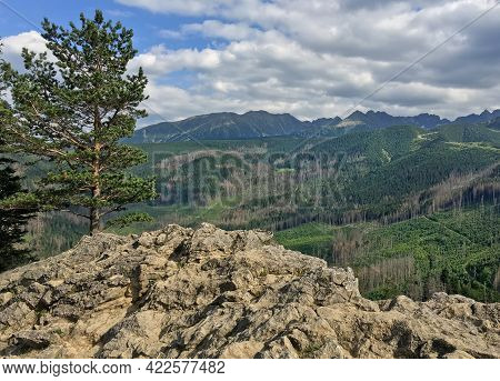 Mountain Landscape With Rocky Cliff And Pine Tree On The Mountainside. View From Mount Nosal, Tatra