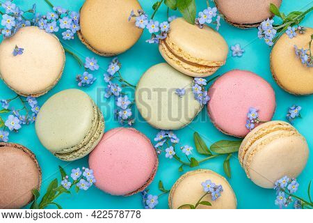 Background Of Forget-me-nots And Macarons. French Biscuit Biscuits Of Different Colors, Blue Backgro