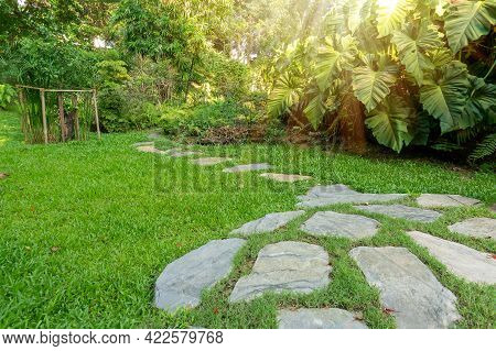 Gray Stone Concrete Pavement Walkway On Green Grass Lawn And Succulent Tropical Plant In Good Care L