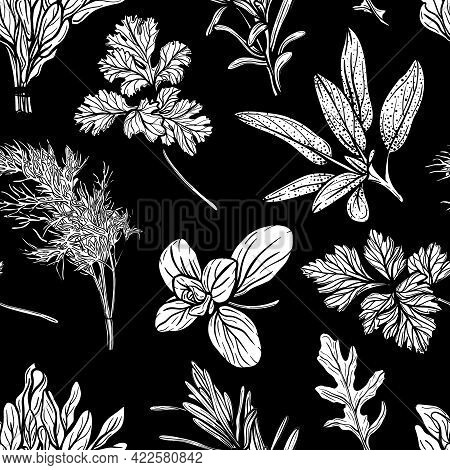 Italian Herbs Seamless Pattern. Provencal Condiments And Herbs Pattern
