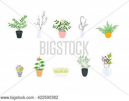Set Of Decorative House Plants. Flowerpot Isolated Objects, Houseplant Flower Pot Collection.