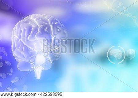 Human Brain, Brain Research Concept - Very Detailed Modern Background Or Texture, Medical 3d Illustr