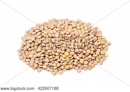 The Lentils Group Isolated On White Bacground
