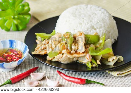 Chicken Stir Fried With Green Chilli And Steamed Rice In Black Dish. Thai Food.
