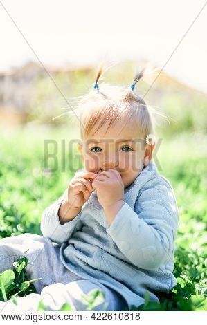 Cute Baby With Two Ponytails And A Chamomile Behind The Ear Gnaws A Fruit Chip While Sitting On A Gr