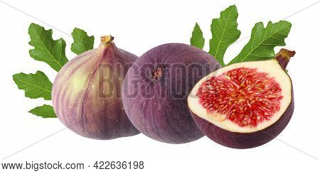 Isolated Figs. Purple Figs Isolated On A White Background With A Clipping Path. A Bunch Of Tropical