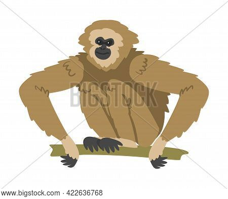 Gibbon Monkey As Arboreal Herbivorous Ape Sitting On Tree Branch Vector Illustration