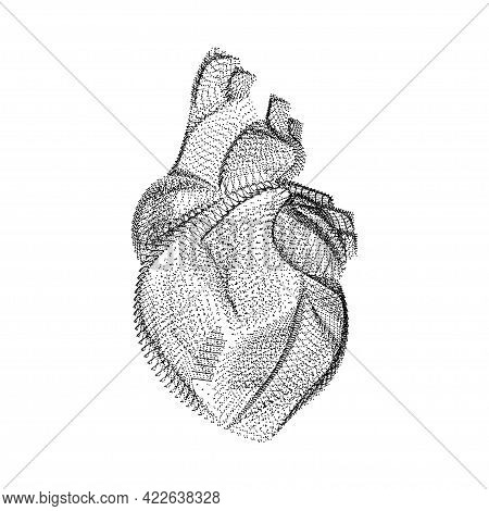 Human Heart Silhouette Consisting Of Black Dots And Particles. 3d Vector Wireframe Of Internal Organ
