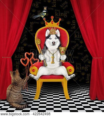 On A Red Throne A Dog Husky In A Gold Crown Holds A Scepter And A Goblet.