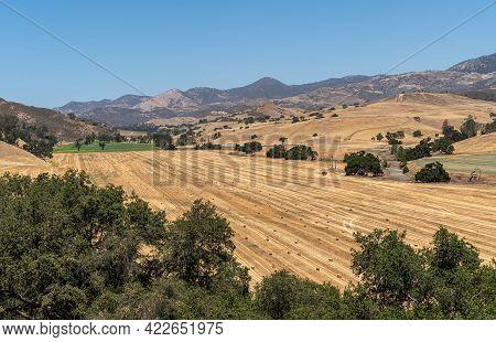 Santa Inez, Ca, Usa - April 3, 2009: San Lorenzo Seminary. Yellow Dry Valley With Freshly Harvested