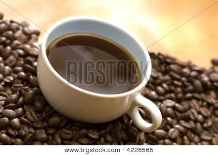 Coffee On Coffee Bean