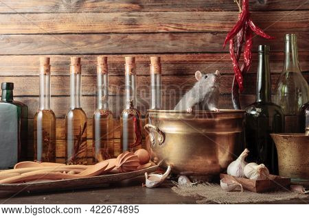 Rat On A Table With Old Kitchen Utensils In A Wooden Shed.