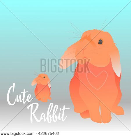 Cute rabbit. Hare. The animal is a hare. A furry little animal. The forest and its inhabitants. Pict