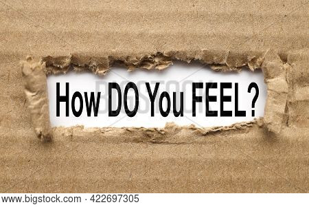 How Do You Feel Question - Isolated Tex In Vintage Letterpress Wood Type