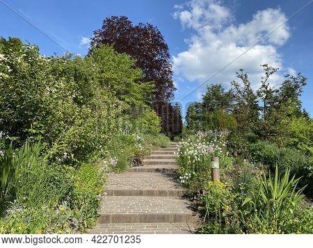 The Botanical Garden Of The University Of Zurich Or Botanischer Garten Der Universität Zürich (botan