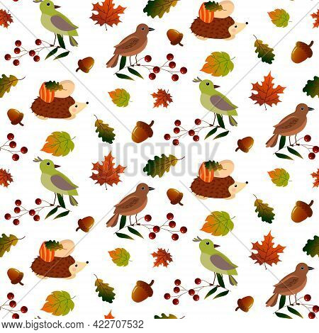 Patterns With Birds, Hedgehog And Autumn Leaves. Hello, Autumn. Vector Illustration Isolated On Whit
