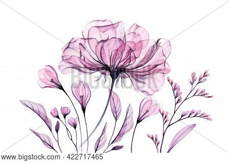 Floral Artwork With Rose In Pink. Watercolor Banner. Hand Painted Bouquet With Transparent Purple Fl