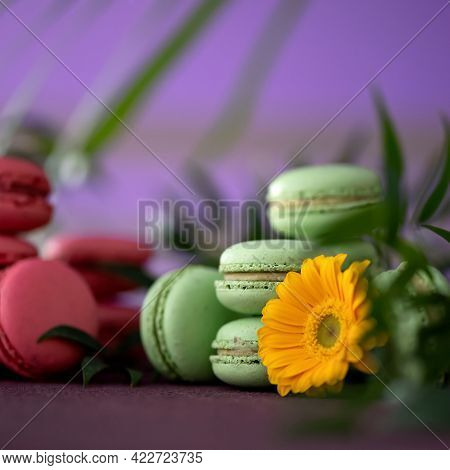 Macaroons French Dessert. Pastries Sweets And Yellow Gerbera Flower On Purple Blurred Background. Br