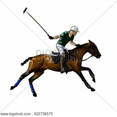 Equestrian Polo With A Jockey From Splash Of Watercolors, Colored Drawing, Realistic, Horseback Ridi