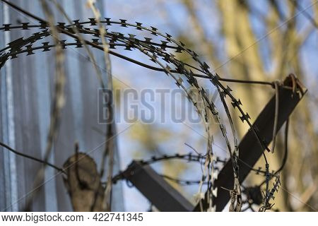 Barbed Wire For Imprisonment For Offenders.barbed Wire For The Siege Area