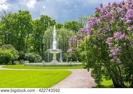 Vase Fountain In Private Garden Of Catherine Palace, Tsarskoe Selo (pushkin), Saint Petersburg, Russ