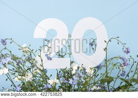 Number Twenty Among Blue Forget-me-not Flowers.  Birthday, Anniversary, Jubilee Concept. For Invitat