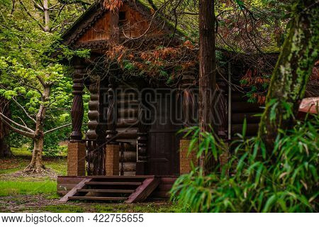 Enchanted Fairy Forest, Building A Tree House In The Forest In Summer, Fresh Air And Greenery, Priva