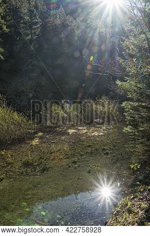 Mirrored Sun In Creek, Velky Sokol Gorge, Slovak Paradise National Park. Seasonal Natural Scene.