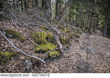 Tourist Path In Big Fatra Mountains, Slovak Republic. Seasonal Natural Scene. Hiking Theme.