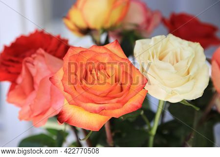 Beautiful Bouquet Of Delicate Colorful Roses Close Up