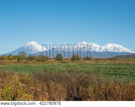 View Of The Domestic Kamchatka Volcanoes Against The Background Of The Blue Sky And Autumn Forest. I
