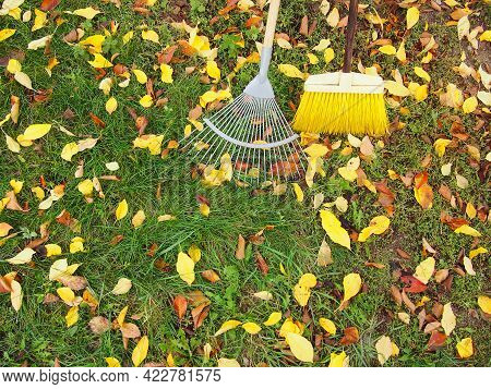 A Rake And A Broom Lie On The Grass And Fallen Colorful Leaves. Autumn Cleaning Of Fallen Leaves.