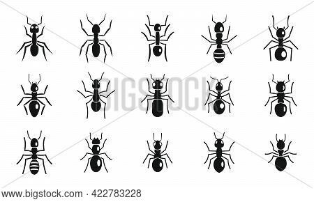 Cute Ant Icons Set. Simple Set Of Cute Ant Vector Icons For Web Design On White Background