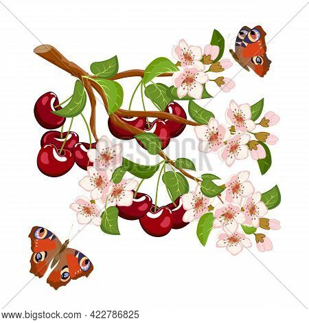 Branch With Cherries And Flowers.vector Illustration With A Branch Of Cherries And Butterflies On A