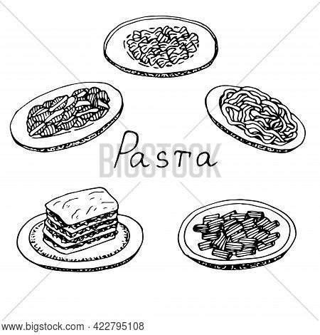 Set Of Pasta Shells Farfalle Linguini Lasagna And Rigatoni Vector Illustration Hand Drawing Sketch