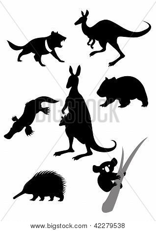 Silhouettes of australian animals