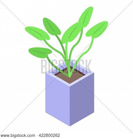 Seed Plant Pot Icon. Isometric Of Seed Plant Pot Vector Icon For Web Design Isolated On White Backgr