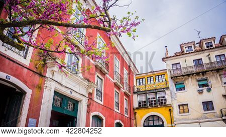 Lisbon, Portugal - March 25, 2017: Typical Colorful Houses Of Alfama In Lisbon, Portugal And Bloomin