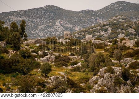 View Of Landscape With Stones And Green Plants And Ancient Lycian Rock Tombs