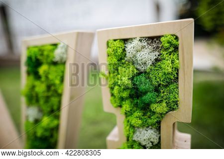 Shallow Depth Of Field (selective Focus) Image With Stabilized Moss And Lichen Used In Architecture.