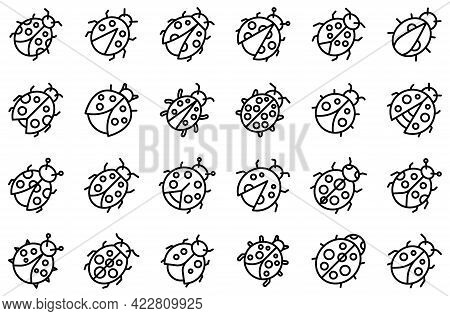 Insect Ladybird Icons Set. Outline Set Of Insect Ladybird Vector Icons For Web Design Isolated On Wh