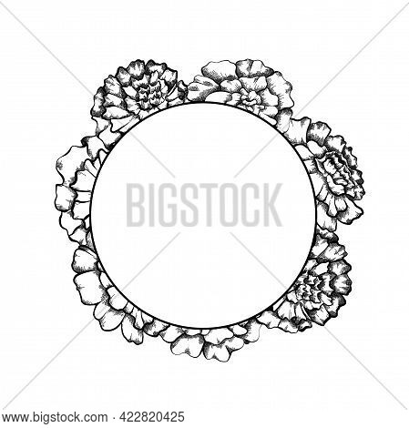 Round Frame With Monochrome Sketch Of Marigolds And Copy Space. Invitation Cards With Flowerhead. Ve
