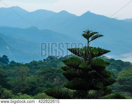 Landscape Of Lantau Island, Hong Kong. Mountains Landscape