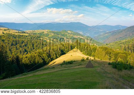 Carpathian Mountain Rural Landscape In The Morning. Forested Hills With Grassy Meadow Rolling Down I